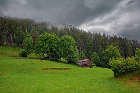 Photo pour Cabane sur le versant des montagnes couvertes de forêts dans les Alpes suisses par une journée nuageuse - image libre de droit