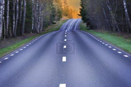 Winding Scandinavian asphalt road