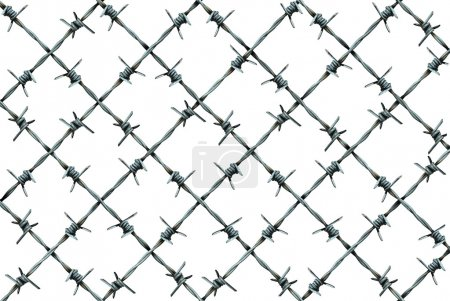 Barbed Wire Fence Pattern