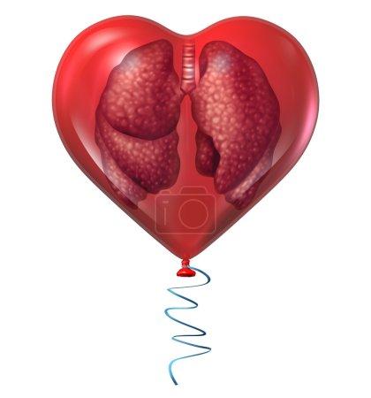 Photo pour Concept de santé pulmonaire et symbole médical avec un organe anatomique humain à l'intérieur d'un ballon rouge comme icône pour les risques cardiovasculaires respiratoires et les soins cardio-vasculaires isolés sur fond blanc . - image libre de droit
