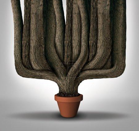 Photo pour Dépasser les attentes concept d'entreprise ou le potentiel maximum et surperformer métaphore comme un petit pot de fleurs avec un géant en expansion troncs d'arbres de plus en plus avec des ressources limitées. - image libre de droit