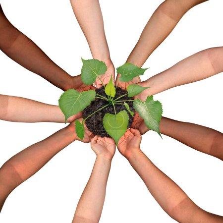 Photo pour Notion de collaboration et de la coopération communautaire et social crowdfunding symbole d'investissement comme un groupe de diverses mains organisé en formation circulaire de cultiver un arbre arbrisseau croissance comme les gens se réunissent pour le succès. - image libre de droit