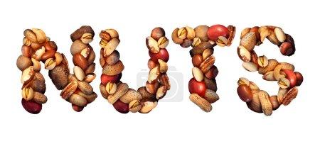 Nuts Symbol