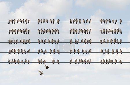 Photo pour Concept d'entreprise de gestion de groupe comme un groupe d'oiseaux sur un fil en forme de motif aligné organisé comme métaphore pour la planification de la coordination du personnel et de l'entreprise et la gestion de la stratégie des employés . - image libre de droit