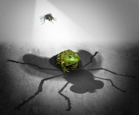 Photo pour Perception et réalité comme l'ombre géante d'un petit bug qui tombe sur une grenouille craintive comme une métaphore psychologique de fausse impression ou symbole de l'illusion et la méprise. - image libre de droit