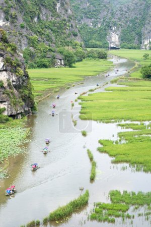 Rice field in Tam Coc