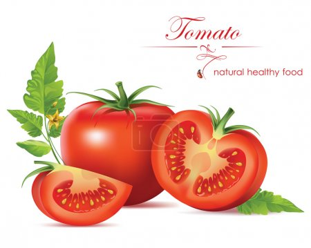 Many beautiful red tomatoes. Vector illustration....