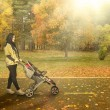 Постер, плакат: Mother with carriage going for a walk in