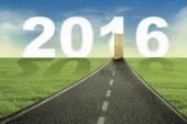 Cesta k nový rok 2016