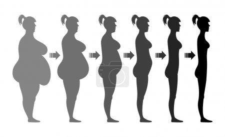 Stages weight loss female figure