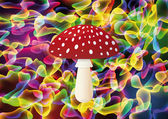 Red mushroom on colorful background Vector illustration