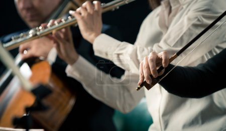 Violinists performing, hands close-up