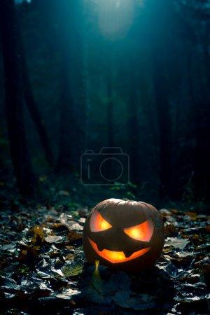 Photo pour Citrouille d'Halloween sombre dans une forêt sombre avec un éclairage spectaculaire . - image libre de droit