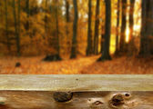Empty table in  autumn forest