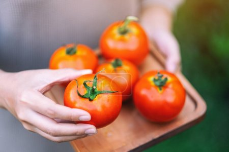 Photo for A woman holding a fresh tomatoes in a wooden tray - Royalty Free Image