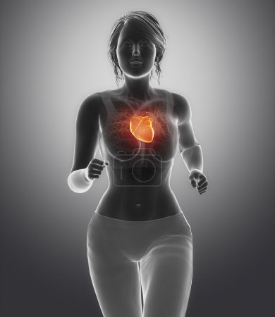 Photo for Athlete Running woman with healhy heart - Royalty Free Image