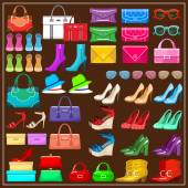 Set shoes handbags and accessories vector illustration