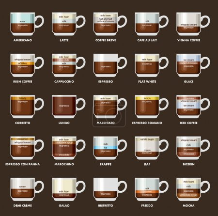 Infographic with coffee types. Recipes, proportions. Coffee menu. Vector illustration