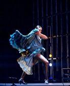 Tanečník flamenca