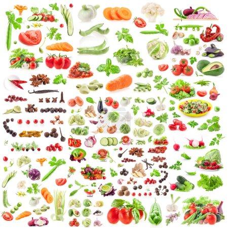 Foto de Gran colección de verduras y especias aisladas en blanco - Imagen libre de derechos