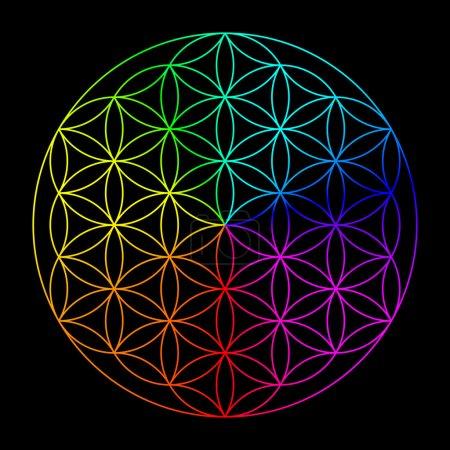 Photo pour Fleur de vie arc-en-ciel - symbole de la géométrie sacrée - image libre de droit
