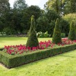 Flowerbeds in garden...