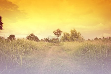 Photo for Beautiful Countryside Landscape Background,Colors Dramatic - Royalty Free Image