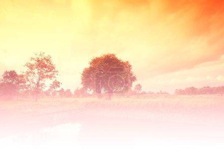 Photo pour Beau paysage de campagne Arrière-plan, Couleurs Dramatique - image libre de droit