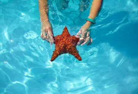 Beautiful colorful starfish in girl hands in blue bright summer water