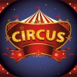 A circus sign in the night for your entertainment...