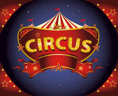 A circus sign in the night for your entertainment