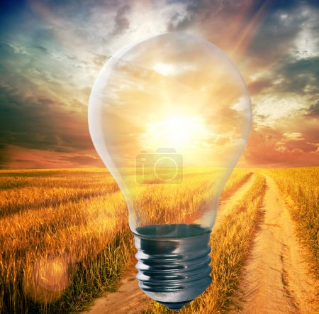 Light bulb with a sunshine inside in field. Enviro...