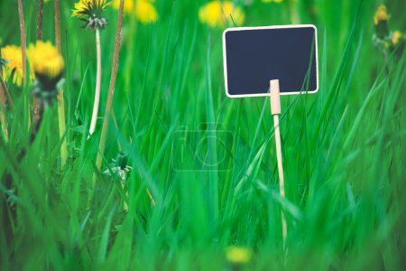 Notice board, wooden blank plate for text in the grass