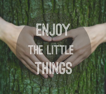 Inspirational motivating quote on tree trunk background
