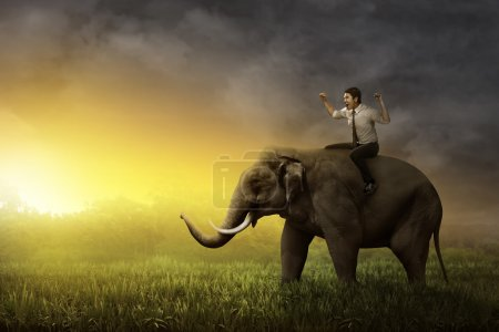 Asian businessman riding elephant