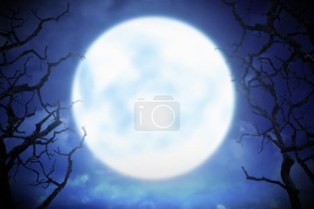 huge full moon at night