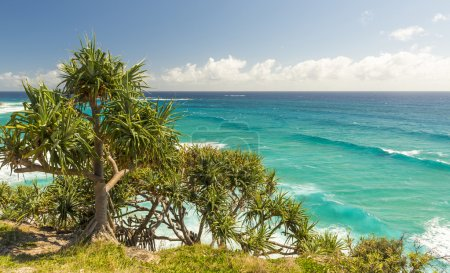 Queensland Australia Coastline