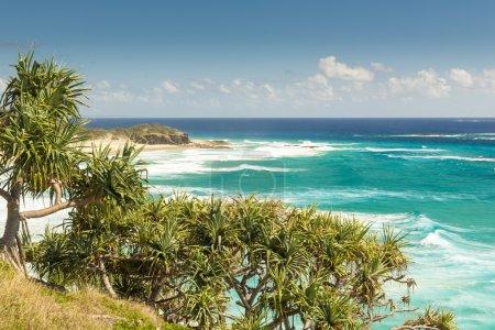 Photo pour Pandanus palmiers et promontoires rocheux le long de la côte du Queensland - image libre de droit