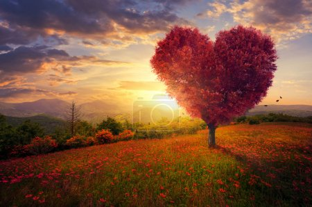 Photo for A red heart shaped tree at sunset. - Royalty Free Image