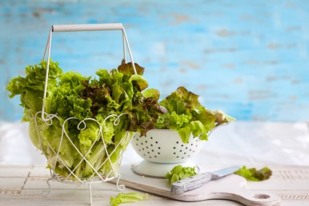 Photo for Various types of lettuce in a basket on the wooden table - Royalty Free Image