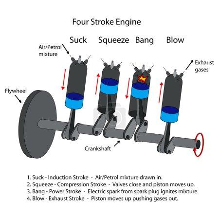 Diagram of four stroke engine.