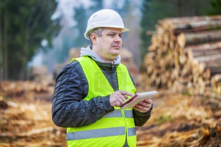 Forest engineer with tablet PC near piles of logs in forest