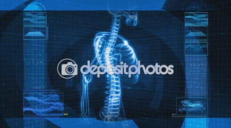 X-Ray of Human Spine (HD)