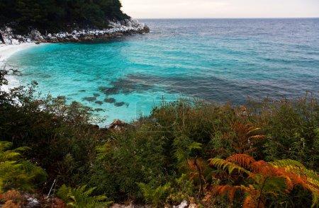 Photo for Saliara Beach (called Marble Beach), beautiful white beach in Thassos island, Greece - Royalty Free Image