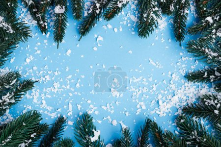 Photo for Flat lay with pine branches and artificial snow on blue background, new year concept - Royalty Free Image