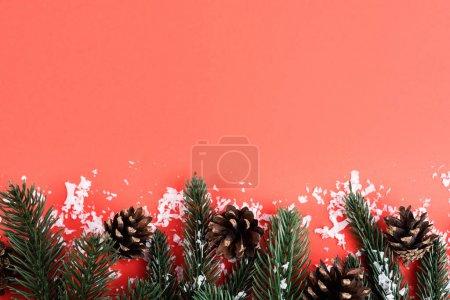 Cônes de pin avec branches de sapin et neige artificielle, concept de nouvelle année