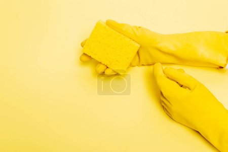 High angle view of hands in rubber gloves holding sponge on yellow background