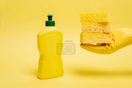 Ausgeschnittene Ansicht einer Person im Gummihandschuh, die Schwämme in der Nähe von Spülmittel auf gelbem Hintergrund hält