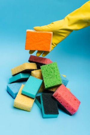 Cropped view of hand in rubber glove holding sponge near colorful sponges on blue background