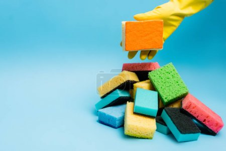Cropped view of person in yellow rubber glove holding sponge near sponges on blue background